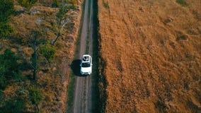 Tiro aéreo de la conducción de automóviles almacen de metraje de vídeo