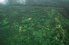 Tiro aéreo de la isla grande - selva tropical Foto de archivo