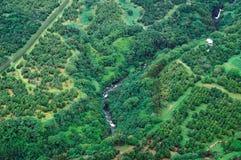 Tiro aéreo de la isla grande - selva tropical Imágenes de archivo libres de regalías