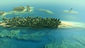 Tiro aéreo de las islas tropicales libre illustration