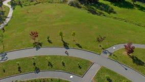 Tiro aéreo de Topview de dois rapazes pequenos que montam bicicletas em um parque vídeos de arquivo