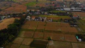 Tiro aéreo de uma área rural na vila de Ubud na ilha de Bali video estoque