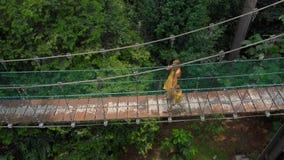 Tiro aéreo de una mujer joven y de su pequeño hijo que caminan en un puente del suspention sobre las selvas Vacaciones en las zon almacen de metraje de vídeo
