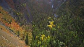 Tiro aéreo de una pequeña cascada que fluye en barranco con los bosques de la montaña del otoño metrajes