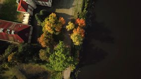 Tiro aéreo de una trayectoria en el bosque cerca del lago Paseo romántico almacen de video