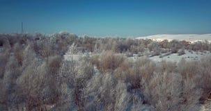 """tiro aéreo del †4K """"de los árboles cubiertos en helada de la nieve en un día de invierno frío metrajes"""