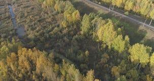 Tiro aéreo del ferrocarril entre los árboles del otoño en bosque en octubre Imagen de archivo