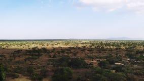Tiro a?reo del pueblo rural africano tradicional de la tribu, la ?frica del Este Paisaje a?reo del prado de la sabana de la canti almacen de metraje de vídeo