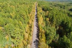 Tiro aéreo del rastro en bosque Fotografía de archivo