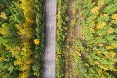 Tiro aéreo del rastro en bosque Imagen de archivo libre de regalías