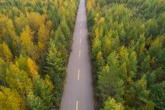 Tiro aéreo del rastro en bosque del otoño Fotos de archivo libres de regalías
