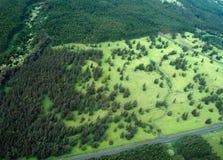 Tiro aéreo do console grande - floresta tropical Imagem de Stock