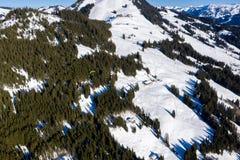 Tiro aéreo do voo do paraglider sobre a floresta da montanha da neve foto de stock royalty free
