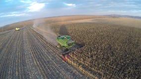 Tiro aéreo do zangão de uma ceifeira de liga que trabalha em um campo no por do sol Disparado em 4k UHD Imagens de Stock
