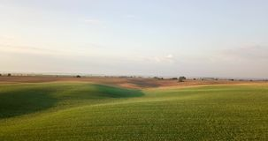 Tiro aéreo dos campos com vários tipos de agricultura cultivar Tiro aéreo da terra Tiro aéreo de agrícola vídeos de arquivo