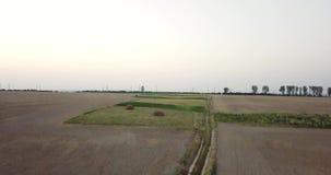 Tiro aéreo dos campos com vários tipos de agricultura cultivar Tiro aéreo da terra Tiro aéreo de agrícola video estoque