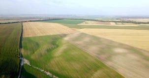 Tiro aéreo dos campos com vários tipos de agricultura cultivar Tiro aéreo da terra Tiro aéreo de agrícola filme