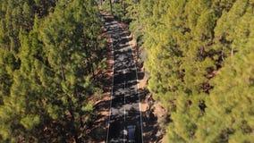 Tiro aéreo Horquilla de enrrollamiento de la serpentina del camino de la montaña en qué paseos del coche, rodeados por el bosque  almacen de metraje de vídeo
