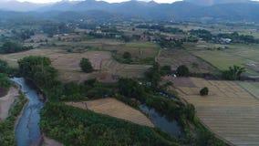 tiro aéreo 4K del campo asiático a través de la pequeña ciudad con el río y los campos almacen de video