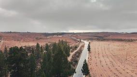 Tiro aéreo Los coches conducen a lo largo de una carretera de asfalto que estira en la distancia contra el contexto de árboles ve almacen de metraje de vídeo