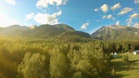 Tiro aéreo sobre el prado y los árboles Vuelo a las montañas flama almacen de metraje de vídeo