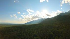Tiro aéreo sobre el vuelo del bosque a las montañas El abejón vuela adelante almacen de video