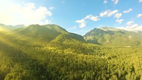 Tiro aéreo sobre el vuelo del bosque a lo largo de las montañas Toma panorámica a la izquierda almacen de metraje de vídeo