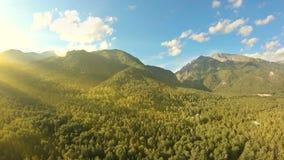 Tiro aéreo sobre el vuelo del bosque a lo largo de las montañas Toma panorámica a la izquierda metrajes
