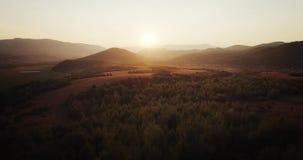 Tiro aéreo: voo sobre o outono colorido o mais forrest da névoa Por do sol dourado da hora filme