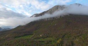 Tiro aereo dell'elicottero dell'foreste non trattate alte nelle montagne stock footage