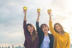 Tiro al aire libre de la gente joven que tuesta bebidas en un partido del tejado Fotografía de archivo