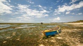 Tiro ancho del barco azul y amarillo vacío en la arena con quelpo del mar Fotografía de archivo