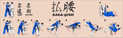 Tiro arrebatador de la cadera del judo Fotos de archivo