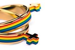 Tiro ascendente cercano en dos anillos de bodas femeninos lesbianos en el fondo blanco Los matrimonios lesbianos publican concept ilustración del vector
