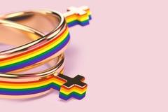 Tiro ascendente cercano en dos anillos de bodas femeninos lesbianos en fondo rosado en colores pastel Los matrimonios lesbianos p ilustración del vector