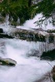 Tiro bonito de um rio com uma corrente forte e um início de uma sessão congelado uma floresta durante o inverno imagens de stock royalty free