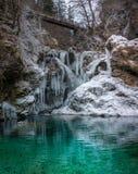 Tiro bonito de uma cachoeira congelada em uma floresta fotografia de stock royalty free