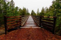 Tiro bonito de uma ponte de madeira em Merritt Creek fotos de stock royalty free