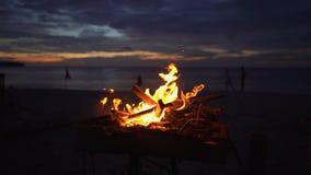Tiro a cámara lenta de una hoguera en una parrilla en una playa hermosa durante puesta del sol almacen de metraje de vídeo