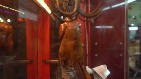 Tiro a cámara lenta de una ventana del café con el pato asado chino tradicionalmente cocinado famoso metrajes