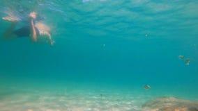 tiro a cámara lenta 4k del hombre caucásico joven que bucea en una máscara y un tubo para respirar en un mar hermoso con las p metrajes