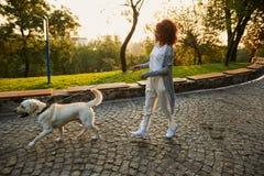 Tiro completo da jovem senhora consideravelmente saudável que anda na manhã no parque com cão imagens de stock royalty free