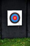 Tiro con l'arco dell'obiettivo e molto freccia. Fotografie Stock Libere da Diritti