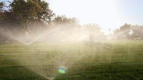 Tiro contra o sol, água de derramamento do gramado verde Espirra do fulgor da água na luz solar vídeos de arquivo