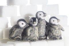 Tiro criativo de cubos e de pinguins do açúcar imagens de stock royalty free