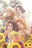 Tiro da forma de quatro mulheres novas fotos de stock royalty free