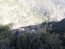 Tiro da montanha Foto de Stock Royalty Free