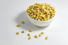 Tiro da perspectiva de sementes do milho no copo pequeno branco com conceito natural fotografia de stock