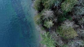 Tiro de arriba del bosque y de las trayectorias que caminan cerca de la ensenada profunda en Vancouver del norte almacen de video