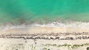 Tiro de arriba de la orilla y del océano de Isla Blanca cerca de Cancun México metrajes
